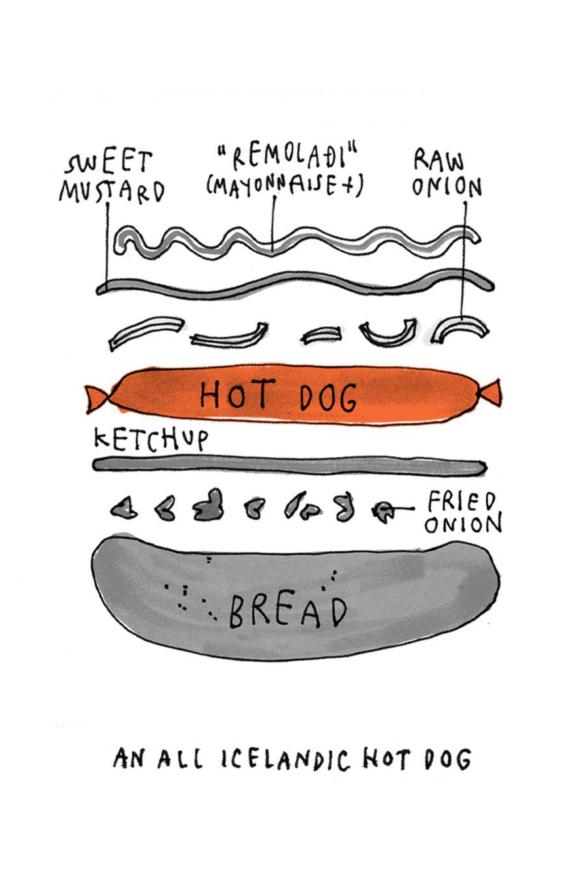 icelandic hot dog