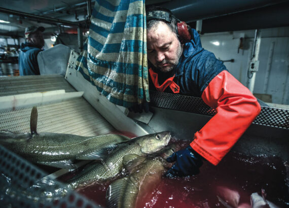 Icelandic Fisherman at sea