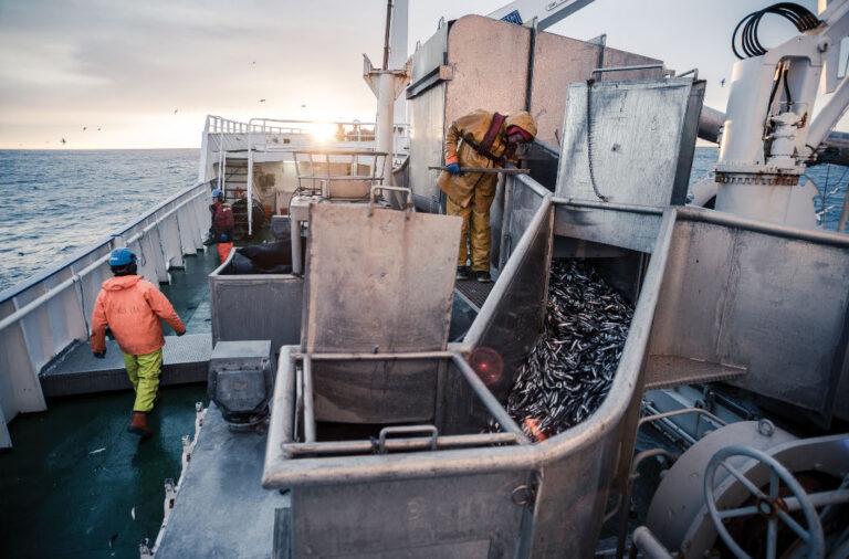 Icelandic Fisherman at sea