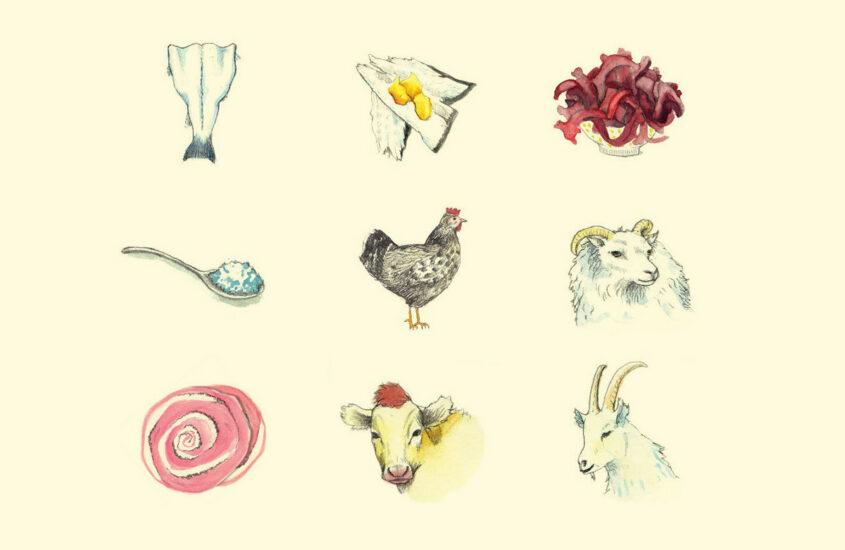 The Slow Food Ark of Taste